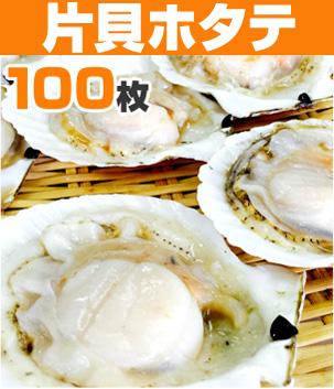 片貝ホタテ100枚