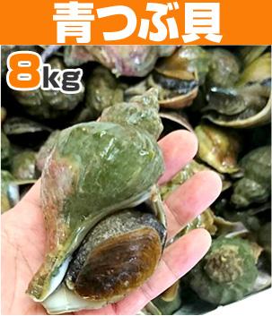 青つぶ貝8kg