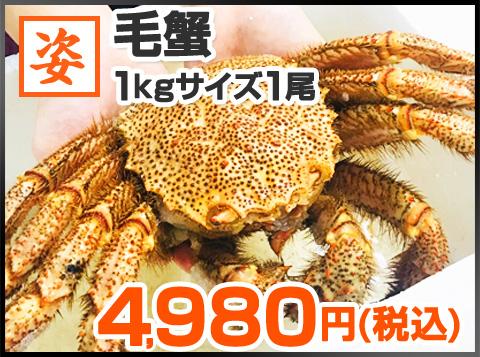毛蟹 1kg1尾