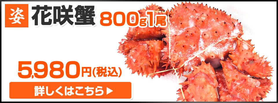 花咲蟹 800g1尾