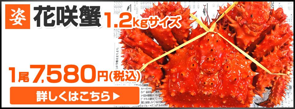 花咲蟹1.2kg